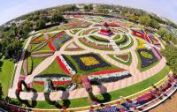 Imagine atasata: Dubai-Miracle-Garden-1.jpg