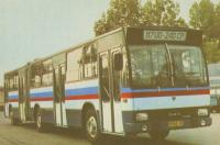 Imagine atasata: bus_0113_203.jpg