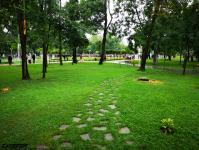 Imagine atasata: Parcul Central - 2019.08.03 - 44.jpg